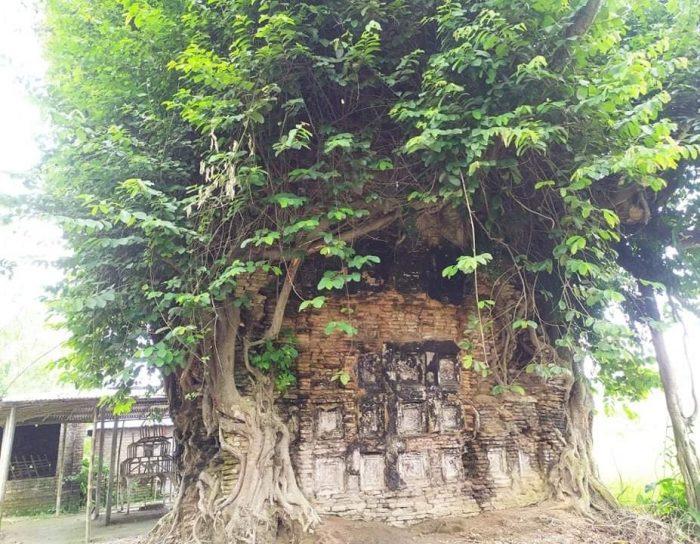 সংরক্ষনের অভাবে ধ্বংসের পথে ব্রিটিশ বিরোধী সংগ্রামের ভবানী পাঠকের মঠ